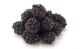 Blackberries-on-white-006